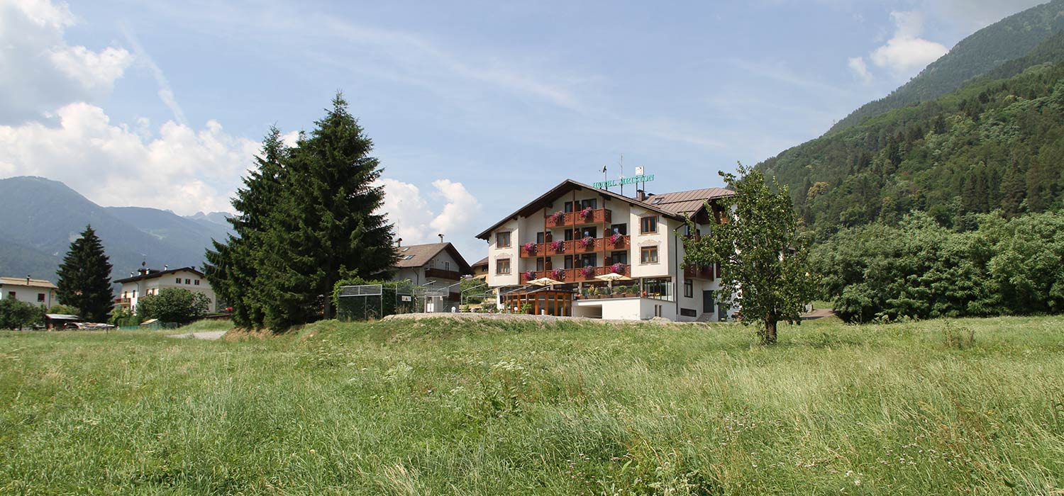 Hotel Ariston in Monclassico Val di Sole: Broad meadows surround the hotel.
