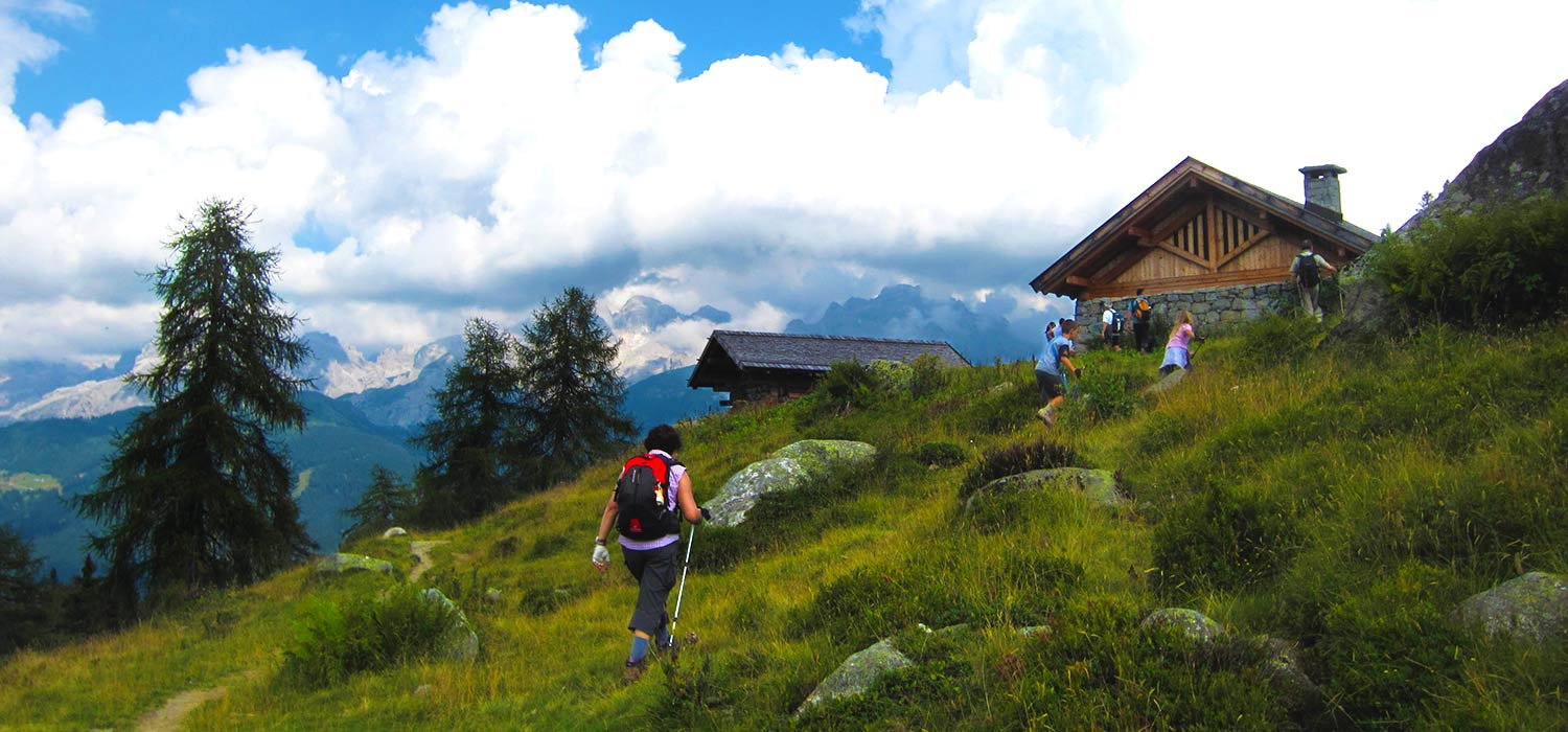 A hiker trekking on an alpine meadow near a hut.